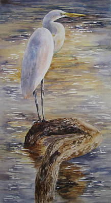 Painting - Morning Perch-egret by Mary McCullah