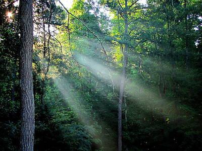 Morning Rays Art Print by Greg Simmons