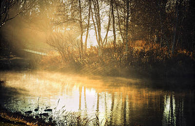 Autumn Scenes Photograph - Morning Rays by Julie Palencia