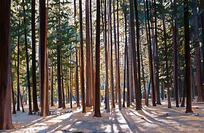 Painting - Morning Redwoods by Lynn Hansen