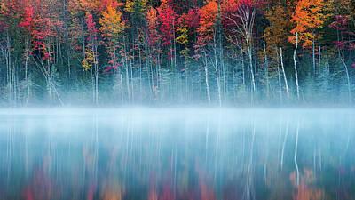 Foliage Photograph - Morning Reflection by John Fan