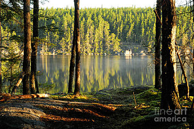 Photograph - Morning Reflections On Paull Lake by Larry Ricker