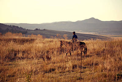 Photograph - Morning Ride by Deborah Johnson