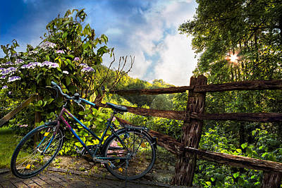 Pasture Rose Photograph - Morning Ride by Debra and Dave Vanderlaan