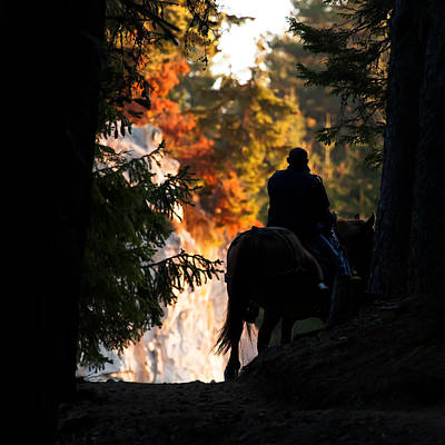 Photograph - Morning Ride  by Svetoslav Sokolov
