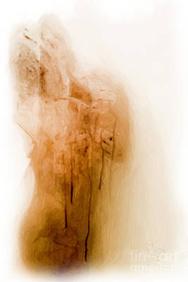 Hair-washing Digital Art - Morning Shower by Edwin Davis