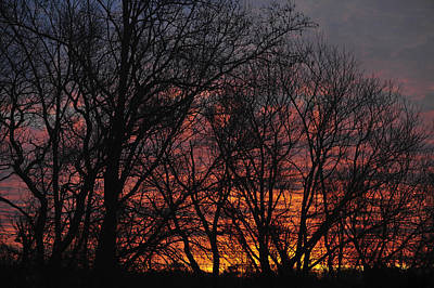 Photograph - Morning Skies by Terry DeLuco