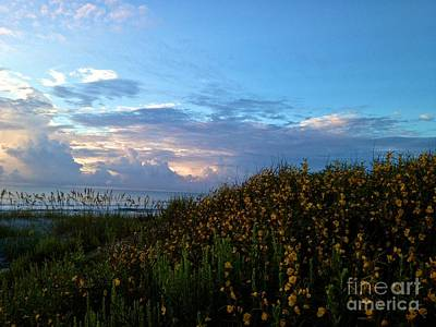 Photograph - Morning Sky by Enid Gough