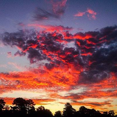 Beauty Photograph - Morning Sky by Scott Pellegrin