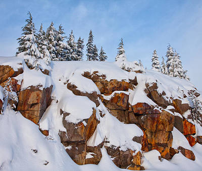 Royalty-Free and Rights-Managed Images - Morning Snow by Darren White