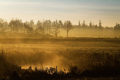 Quietly Photograph - Morning Softly by Odd Jeppesen