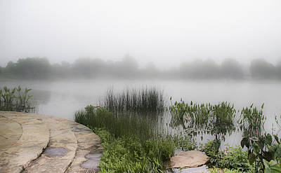 Photograph - Morning Summer Mist by Julie Palencia