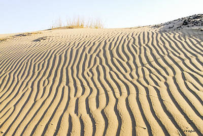 Photograph - Morning Shadows Across Sand Dune by Allen Sheffield