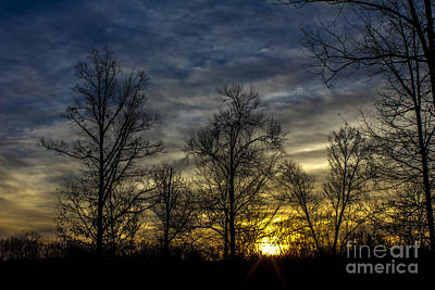 Photograph - Morning Sun by Debra K Roberts