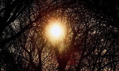 Painting - Morning Sun  by Jon Baldwin  Art
