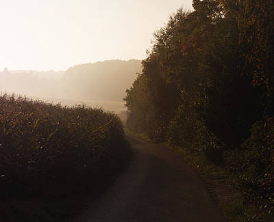 Photograph - Morning Sun by Miguel Winterpacht