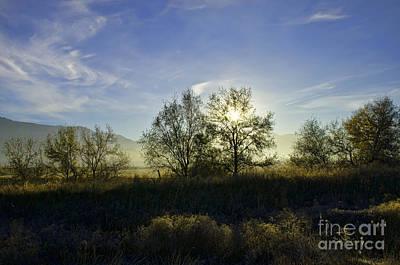 Morning Sun  Art Print by Nicole Markmann Nelson
