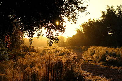 Mark Wagner Wall Art - Photograph - Morning Sun On The Trail by Mark Wagner