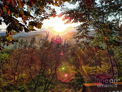Photograph - Morning Sunbeams by Karen Lewis