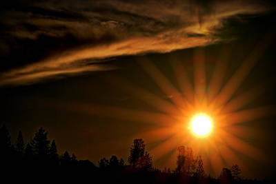 Photograph - Morning Sunburst by Michael Curry
