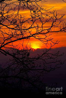 Photograph - Morning Sunrise by Deb Kline