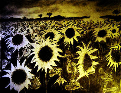 Valentines Day - Morning Sunshine On a Field of Sunflowers by Jose A Gonzalez Jr