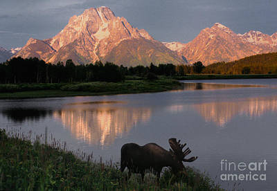 Wyoming Photograph - Morning Tranquility by Sandra Bronstein