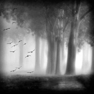 Depart Photograph - Morning Trees by Jacqueline Van Bijnen