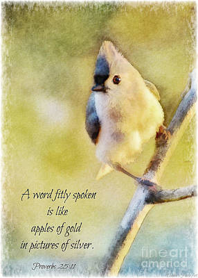Photograph - Morning Tufted Titmouse - Digital Paint II With Verse by Debbie Portwood