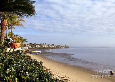 Photograph - Morning View South San Diego Bay by Barbie Corbett-Newmin