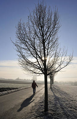 Photograph - Morning Walk by Matthias Hauser