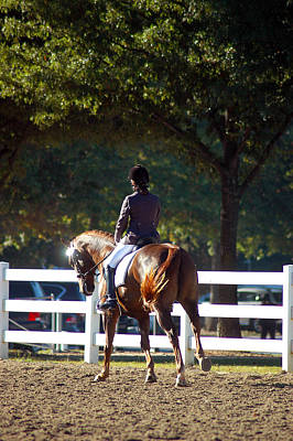 Hanovarian Dressage Horse Photograph - Morning Warm Up by Kelly Wright