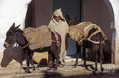 Photograph - Moroccan Muleteer - Chechaouen Morocco by Craig Lovell