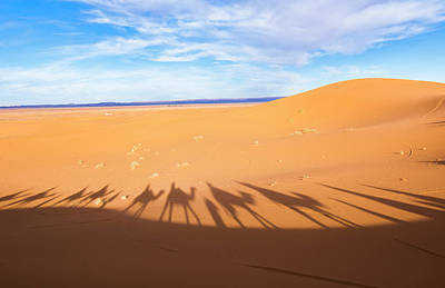 Sahara Photograph - Morocco Sahara Desert Sand Dunes In Las by Bill Bachmann