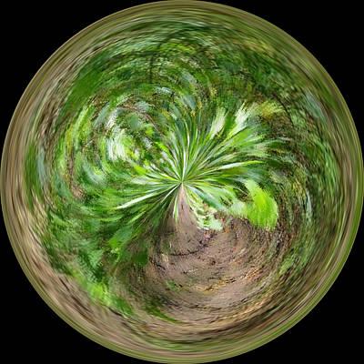 Antlers - Morphed Art Globe 3 by Rhonda Barrett