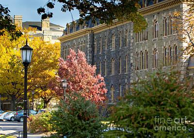 Morrill Hall Cornell University Art Print