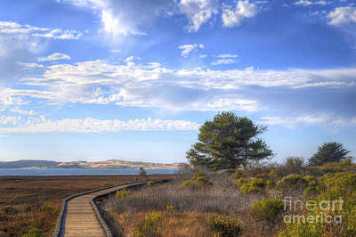 Photograph - Morro Bay Boardwalk by Mathias