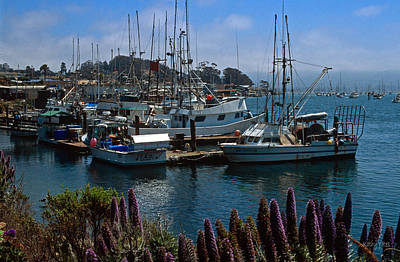 Morro Bay Harbor Art Print by Kathy Yates