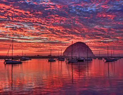 Beach Photograph - Morro Bay On Fire by Beth Sargent