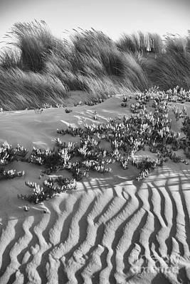Morro Beach Textures Bw Art Print