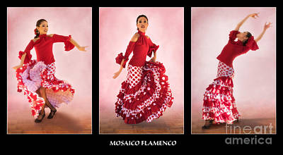Mosaico Photograph - Mosaico Flamenco by Priscilla Burgers