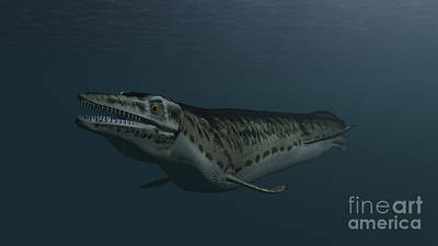 Animals Digital Art - Mosasaur Swimming In Prehistoric Waters by Kostyantyn Ivanyshen