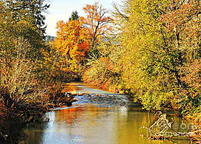Mosby Photograph - Mosby Creek In Fall by Mindy Bench