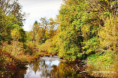 Photograph - Mosby Creek Reflections by Mindy Bench