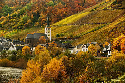 Photograph - Mosel Morning-mosel by John Galbo