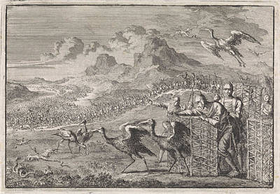 Ibis Drawing - Moses Dispels The Snakes By Releasing Ibises by Jan Luyken And Pieter Mortier