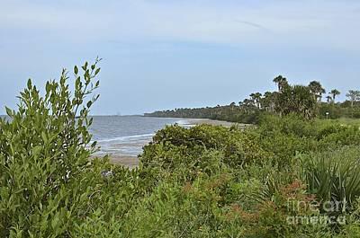 Photograph - Mosquito Lagoon Beach by Carol  Bradley