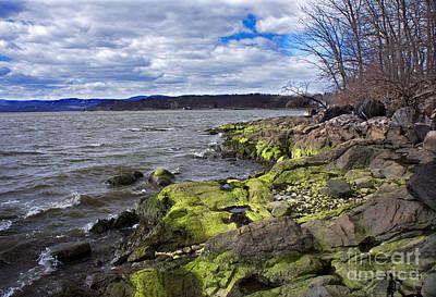 Moss Along The Hudson River Art Print by Rafael Quirindongo