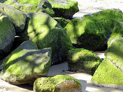 Photograph - Moss On The Rocks by Bob Slitzan