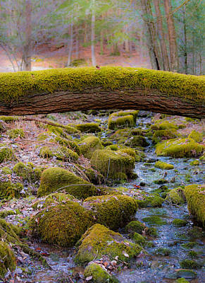 Wall Art - Photograph - Moss Bridge by Scott Hafer